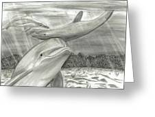 3 Dolphins Playing In Shallow Ocean Water Greeting Card