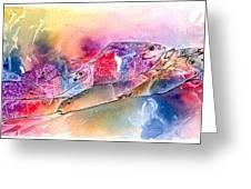 A Rainbow Of Salmon Greeting Card