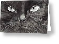 Black Cat Charcoal Drawing Greeting Card