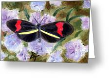 Butterfly Aceo Greeting Card