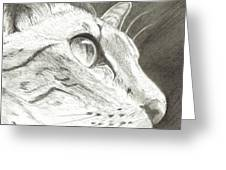 Cat Side Profile Greeting Card