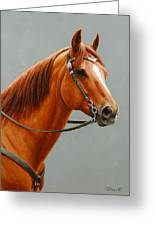 Chestnut Dun Horse Painting Greeting Card