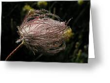 Fleur Coeur Greeting Card