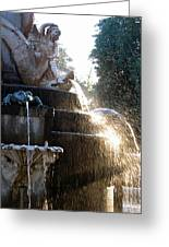 Fuente En Retiro Greeting Card