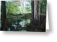 Ginny Springs Greeting Card