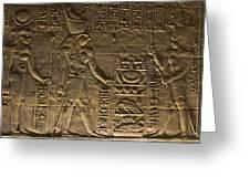 Hieroglyph At Edfu Greeting Card by Darcy Michaelchuk