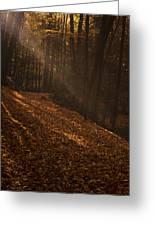 Light Breaking Thru Greeting Card by Andrew Soundarajan