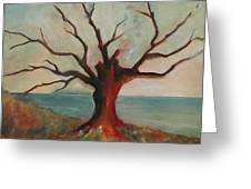Lone Oak - Gulf Coast Greeting Card