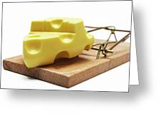 Piece Of Cheese In Mouse Trap Greeting Card by Sami Sarkis