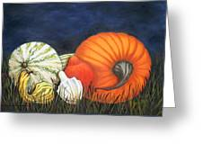 Pumpkin And Gourds Greeting Card