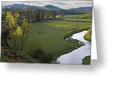 Spring Morning On Palouse River Greeting Card