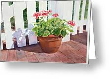 Sunny Day Geraniums Greeting Card by Bobbi Price