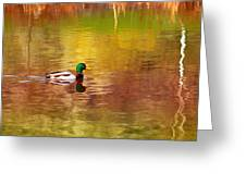 Swimming In Reflections Greeting Card