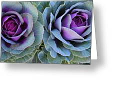 The Cabbage Patch Greeting Card