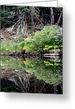 Water Like A Mirror Greeting Card