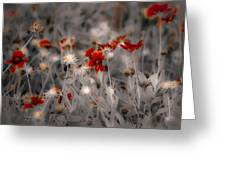 Wildflowers Of The Dunes Greeting Card by DigiArt Diaries by Vicky B Fuller