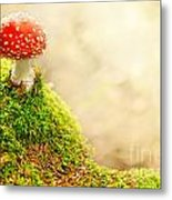 Fly Agaric Metal Print by Stefan Holm