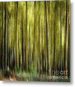 Forest Metal Print by Bernard Jaubert