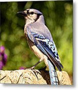 Shades Of Blue Metal Print by Lori Tambakis
