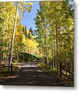 Telluride Colorado Fall Metal Print by Michael J Bauer