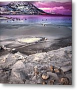 The Thaw Metal Print by Tara Turner