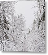 Winter Road Metal Print by Cheryl Baxter