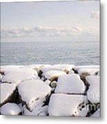 Winter Shore Of Lake Ontario Metal Print by Elena Elisseeva