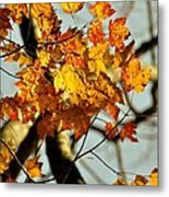 22nd Of September Metal Print by JAMART Photography