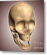 Conceptual Image Of Human Skull Metal Print by Stocktrek Images
