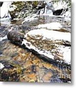 White Oak Run In Winter Metal Print by Thomas R Fletcher