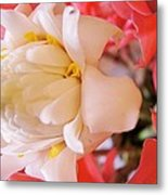 Flower For You  Metal Print by Gornganogphatchara Kalapun