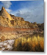 A Coyote At Pawnee Arroyo Metal Print by Ric Soulen