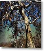 A Day Like This Metal Print by Laurie Search