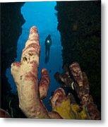 A Diver Looks Into A Cavern Metal Print by Steve Jones