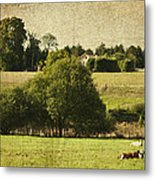 A French Country Scene Metal Print