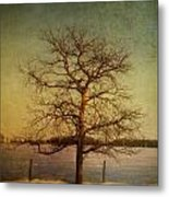 A Pictorialist Photograph Of A Lone Metal Print by Roberta Murray