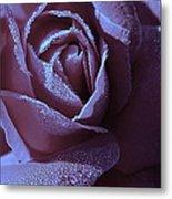 A Rose That Glitters Metal Print