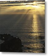 A Touch Of Heaven Metal Print by Sandra Bronstein