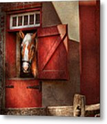 Animal - Horse - Calvins House  Metal Print by Mike Savad