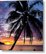 Anini Palm Metal Print by Adam Pender