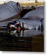 Anybody Want To Play Submarines? Metal Print by Graham Palmer
