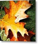 Autumn Blaze Metal Print
