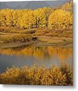Autumn Foliage Surrounds A Pool In The Metal Print