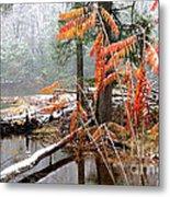 Autumn Snow Cranberry River Metal Print