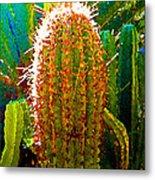 Backlit Cactus Metal Print