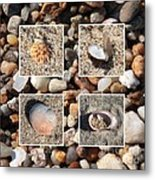 Beach Shells And Rocks Collage Metal Print by Carol Groenen
