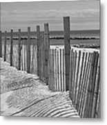Beach Snow  Metal Print by Catherine Reusch Daley