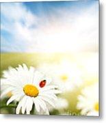 Beautiful Ladybug And Beautiful Flower Metal Print