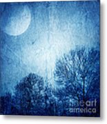 Beautiful Moonlight Photos Metal Print