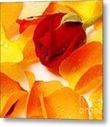 Beautiful Roses Valentine Metal Print by Boon Mee